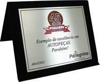 Placa de homenagem empresarial por exemplo de excelência em autopeças.