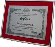 Réplica de diploma para homenagear empresa pelo alto espírito associativo em prol da categoria econômica  dos revendedores de veículos.