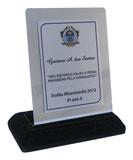 Troféu basico com placa-suporte de aço inox espelhado e placa gravada medindo 8x6cm