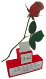 Troféu Rosa com placas gravadas medindo 4x4cm e 14x4cm.